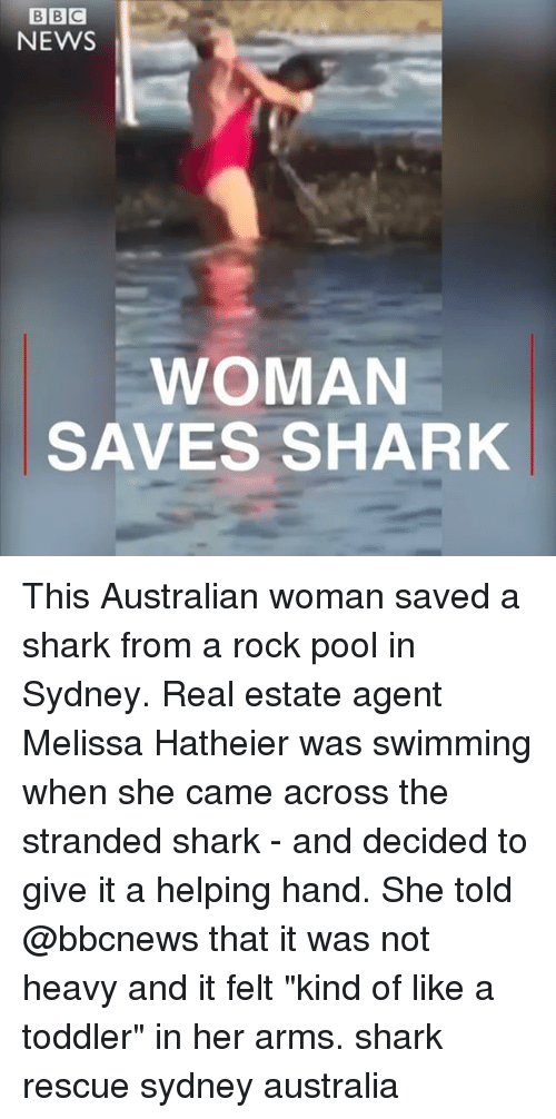 "real estate agent: NEWS  WOMAN  SAVES SHARK This Australian woman saved a shark from a rock pool in Sydney. Real estate agent Melissa Hatheier was swimming when she came across the stranded shark - and decided to give it a helping hand. She told @bbcnews that it was not heavy and it felt ""kind of like a toddler"" in her arms. shark rescue sydney australia"