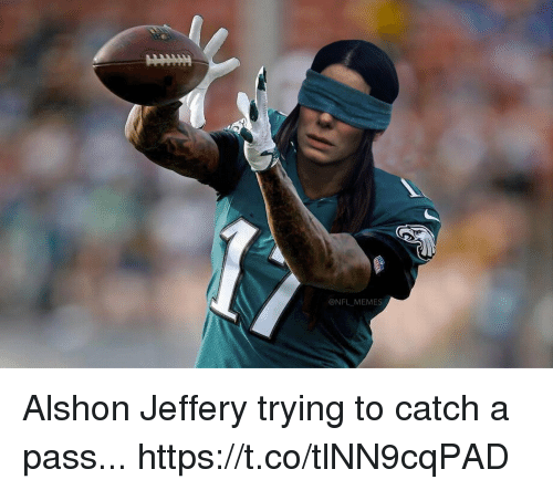 Football, Memes, and Nfl: @NFL_MEMES Alshon Jeffery trying to catch a pass... https://t.co/tlNN9cqPAD
