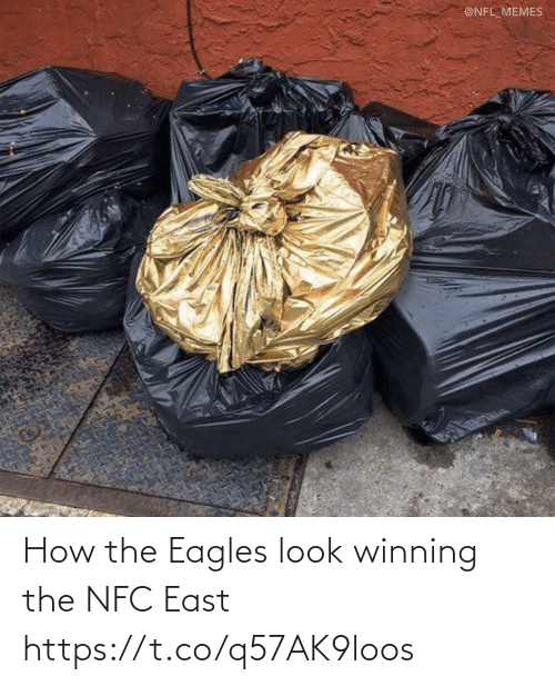 Philadelphia Eagles: @NFL_MEMES How the Eagles look winning the NFC East https://t.co/q57AK9loos
