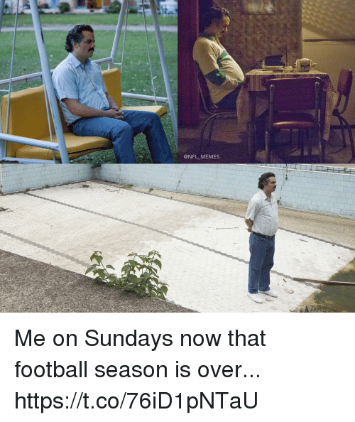 Football, Memes, and Nfl: @NFL MEMES Me on Sundays now that football season is over... https://t.co/76iD1pNTaU