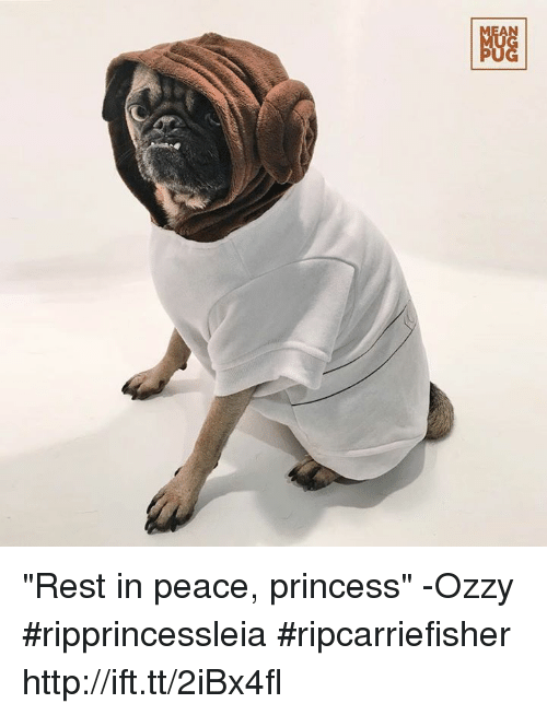 """Ozzies: NGG """"Rest in peace, princess"""" -Ozzy #ripprincessleia #ripcarriefisher http://ift.tt/2iBx4fl"""