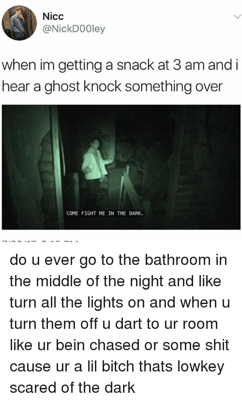 Bitch, Memes, and Shit: Nicc  @NickDOOley  when im getting a snack at 3 am and i  hear a ghost knock something over  COME FIGHT ME IN THE DARK. do u ever go to the bathroom in the middle of the night and like turn all the lights on and when u turn them off u dart to ur room like ur bein chased or some shit cause ur a lil bitch thats lowkey scared of the dark