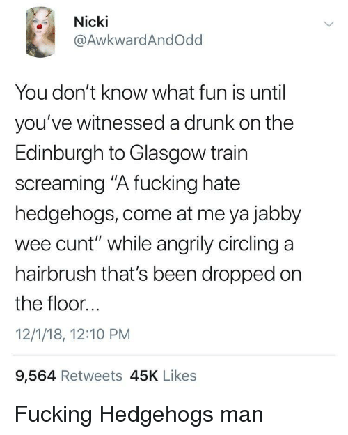"""Drunk, Fucking, and Wee: Nicki  @AwkwardAndOdd  You don't know what fun is until  you've witnessed a drunk on the  Edinburgh to Glasgow train  screaming """"A fucking hate  hedgehogs, come at me ya jabby  wee cunt"""" while angrily circling a  hairbrush that's been dropped on  the floor...  12/1/18, 12:10 PM  9,564 Retweets 45K Likes Fucking Hedgehogs man"""