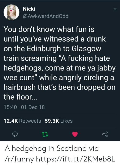 """Drunk, Fucking, and Funny: Nicki  @AwkwardAndOdd  You don't know what fun is  until you've witnessed a drunk  on the Edinburgh to Glasgow  train screaming """"A fucking hate  hedgehogs, come at me ya jabby  wee cunt"""" while angrily circling a  hairbrush that's been dropped on  the floor  15:40 01 Dec 18  12.4K Retweets 59.3K Likes A hedgehog in Scotland via /r/funny https://ift.tt/2KMeb8L"""