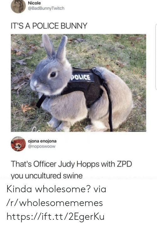 hopps: Nicole  @BadBunnyTwitch  IT'S A POLICE BUNNY  OLICE  ojona enojona  @noposwoow  That's Officer Judy Hopps with ZPD  you uncultured swine Kinda wholesome? via /r/wholesomememes https://ift.tt/2EgerKu