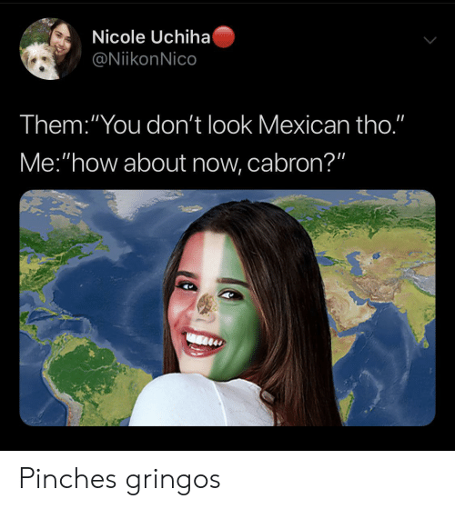 """Mexican, How, and Them: Nicole Uchiha  @NiikonNico  Them:""""You don't look Mexican tho.""""  Me:""""how about now, cabron?"""" Pinches gringos"""