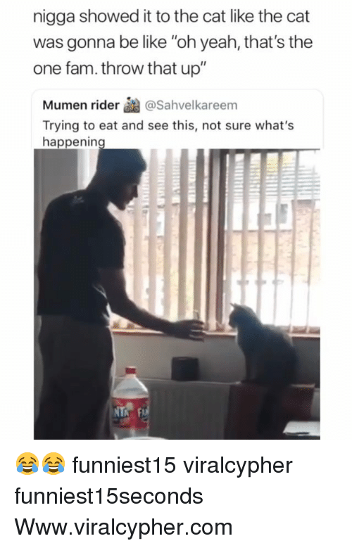 """Be Like, Fam, and Funny: nigga showed it to the cat like the cat  was gonna be like """"oh yeah, that's the  one fam. throw that up""""  Mumen rider醐@Sahvelkareem  Trying to eat and see this, not sure what's  happenin 😂😂 funniest15 viralcypher funniest15seconds Www.viralcypher.com"""