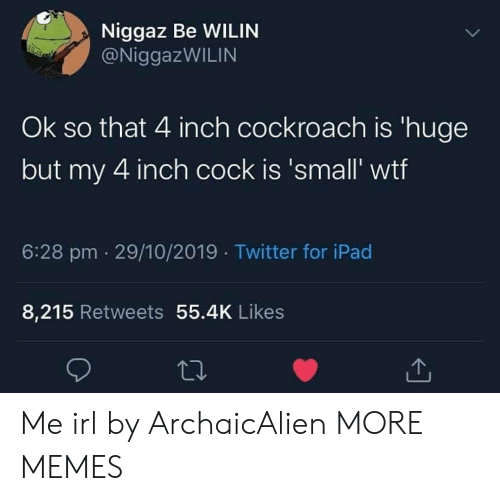 ipad: Niggaz Be WILIN  @NiggazWILIN  Ok so that 4 inch cockroach is 'huge  but my 4 inch cock is 'small' wtf  6:28 pm 29/10/2019 Twitter for iPad  8,215 Retweets 55.4K Likes Me irl by ArchaicAlien MORE MEMES