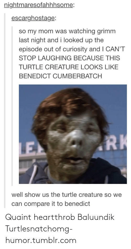 quaint: nightmaresofahhhsome:  escarghostage:  so my mom was watching grimm  last night and i looked up the  episode out of curiosity and I CAN'T  STOP LAUGHING BECAUSE THIS  TURTLE CREATURE LOOKS LIKE  BENEDICT CUMBERBATCH  RK  LE  well show us the turtle creature so we  can compare it to benedict Quaint heartthrob Baluundik Turtlesnatchomg-humor.tumblr.com