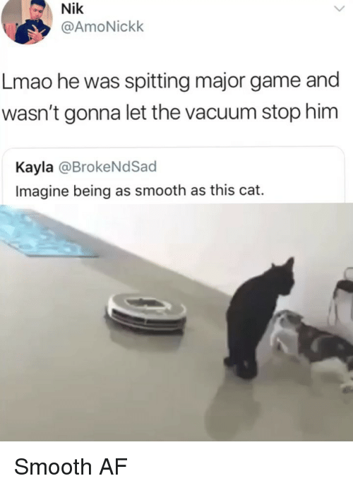 Smooth Af: Nik  @AmoNickk  Lmao he was spitting major game and  wasn't gonna let the vacuum stop him  Kayla @BrokeNdSacd  Imagine being as smooth as this cat. Smooth AF