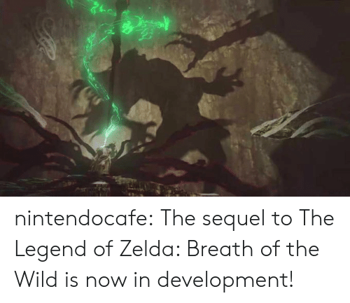 Tumblr, Blog, and Wild: nintendocafe:  The sequel to The Legend of Zelda: Breath of the Wild is now in development!