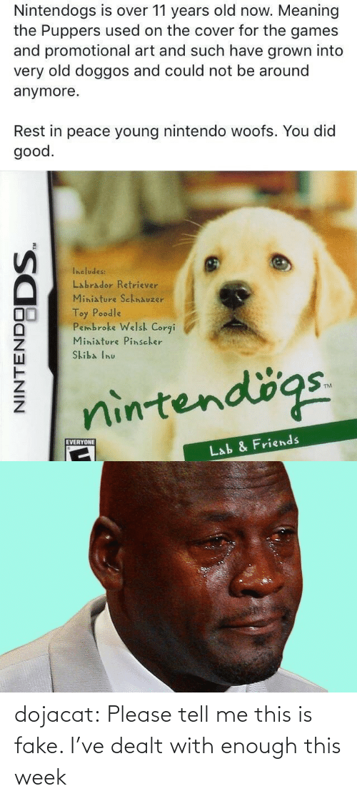 Cover: Nintendogs is over 11 years old now. Meaning  the Puppers used on the cover for the games  and promotional art and such have grown into  very old doggos and could not be around  anymore.  Rest in peace young nintendo woofs. You did  good.  Includes:  Labrador Retriever  Miniature SchnAuzer  Toy Poodle  Pembroke Welsh Corgi  Miniature Pinscher  Skiba Inu  nintendögs.  EVERYONE  Lab & Friends  NINTENDO  DODS. dojacat:  Please tell me this is fake. I've dealt with enough this week