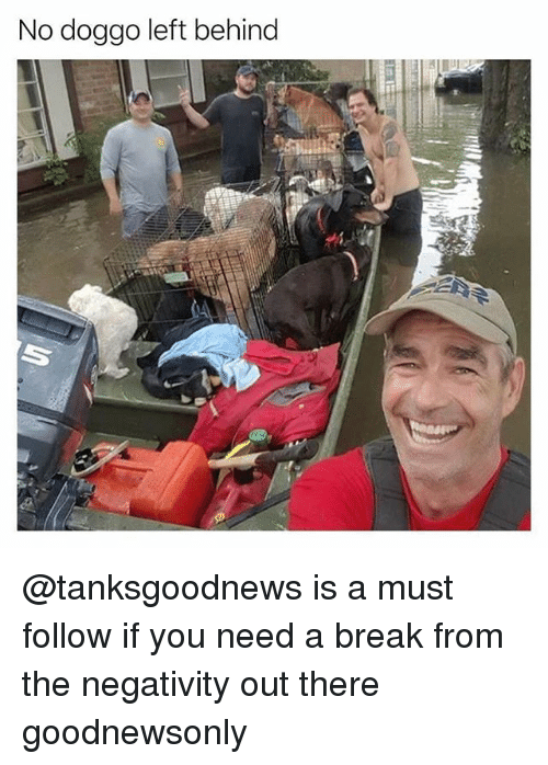 Funny, Break, and Left Behind: No doggo left behind @tanksgoodnews is a must follow if you need a break from the negativity out there goodnewsonly