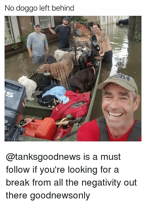 Memes, Break, and Left Behind: No doggo left behind @tanksgoodnews is a must follow if you're looking for a break from all the negativity out there goodnewsonly