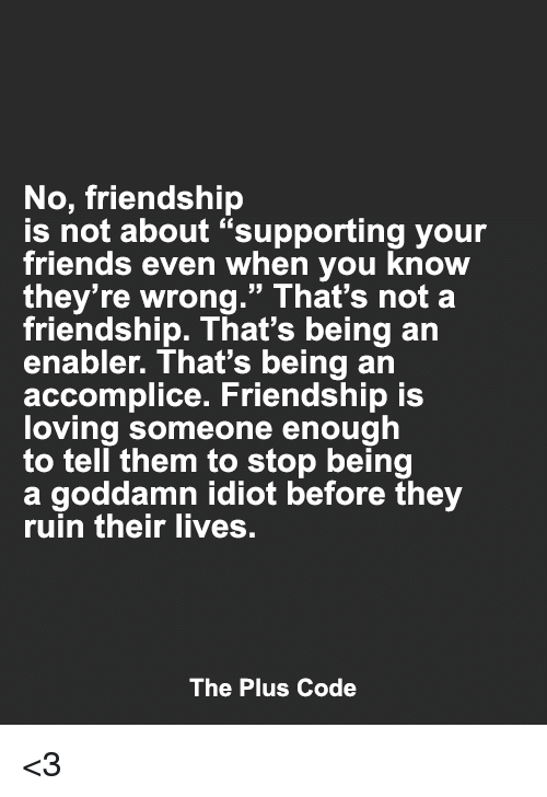 "enabler: No, friendship  is not about ""supporting your  friends even when you know  they're wrong."" That's not a  friendship. That's being an  enabler. That's being an  accomplice. Friendship is  loving someone enough  to tell them to stop being  a goddamn idiot before they  ruin their lives.  The Plus Code <3"