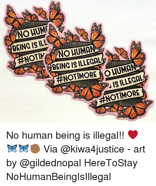 Memes, 🤖, and Art: NO HUM  BEING IS ILL  BEING IS ILLEGAL  #NOT MORE  UMA  IS ILLEGAL  No human being is illegal!! ❤️🦋🦋✊🏾 Via @kiwa4justice - art by @gildednopal HereToStay NoHumanBeingIsIllegal