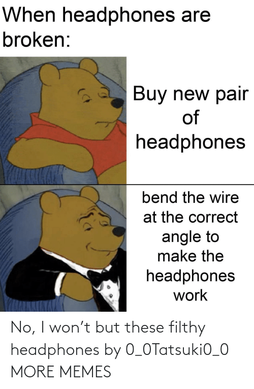 Headphones: No, I won't but these filthy headphones by 0_0Tatsuki0_0 MORE MEMES