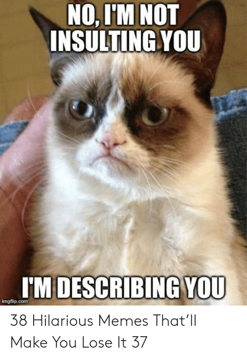 Memes, Hilarious, and Insulting: NO, I'M NOT  INSULTING YOU  I'M DESCRIBING YOU  mgflip.com 38 Hilarious Memes That'll Make You Lose It 37
