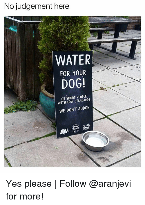 Judgementality: No judgement here  WATER  FOR YOUR  DOG  OR SHORT PEOPLE  WITH LOW STANDARDS  WE DON'T JUDGE  SID Yes please | Follow @aranjevi for more!