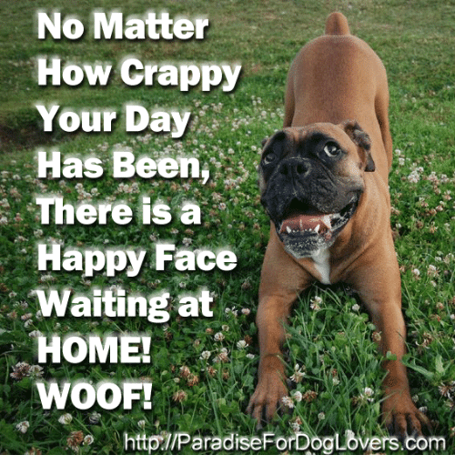 happy faces: No Matter  How Crappy  Your Day  Has Been  There IS a  Happy Face  Waiting at  HOME!  WOOF!  httpTIParadiseForDoaLovers.com