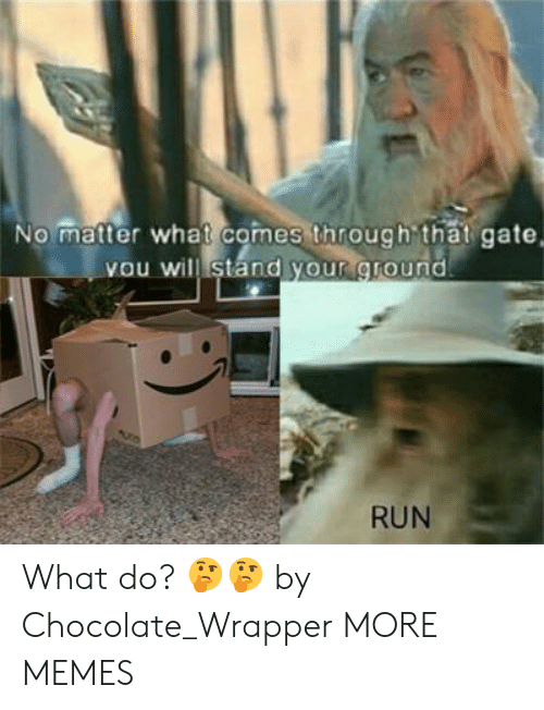 Dank, Memes, and Run: No matter what comes through that gate  you will stand your ground  RUN What do? 🤔🤔 by Chocolate_Wrapper MORE MEMES