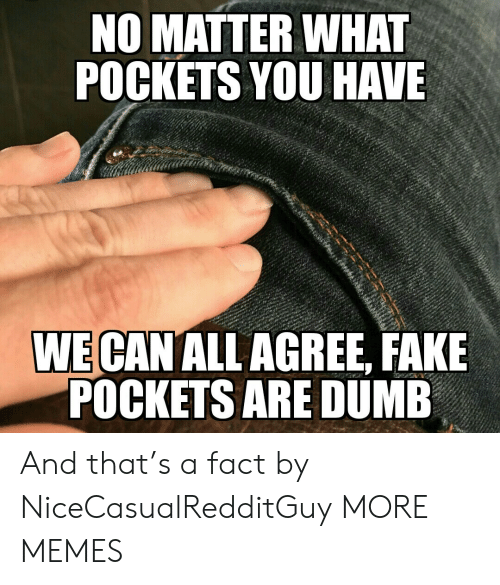 Dank, Dumb, and Fake: NO MATTER WHAT  POCKETS YOU HAVE  WE CAN ALL AGREE, FAKE  POCKETS ARE DUMB And that's a fact by NiceCasualRedditGuy MORE MEMES