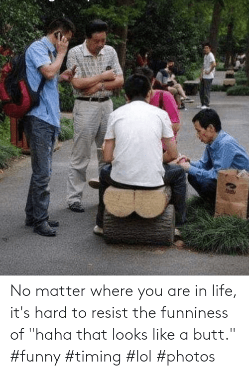 """matter: No matter where you are in life, it's hard to resist the funniness of """"haha that looks like a butt."""" #funny #timing #lol #photos"""