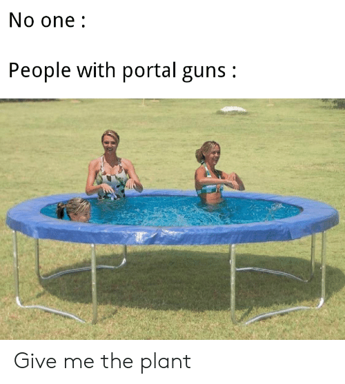 Guns, Portal, and One: No one:  People with portal guns: Give me the plant