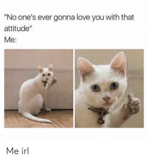 """Love, Attitude, and Irl: """"No one's ever gonna love you with that  attitude""""  Me: Me irl"""