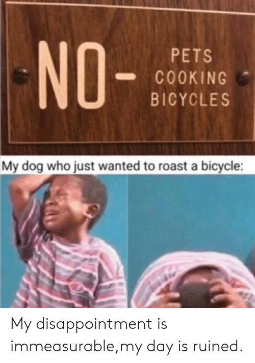 Roast, Bicycle, and Pets: NO-  PETS  COOKING  BICYCLES  My dog who just wanted to roast a bicycle: My disappointment is immeasurable,my day is ruined.