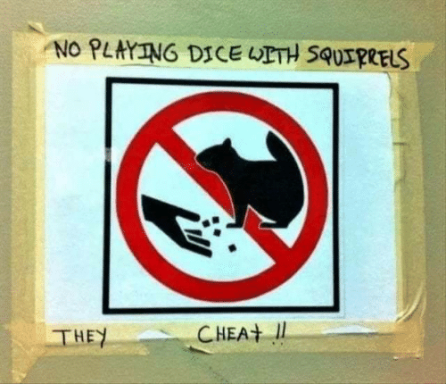 Dice, They, and  No: NO PLAYING DICE UETH SQUIRRELS  CHEA  THEY