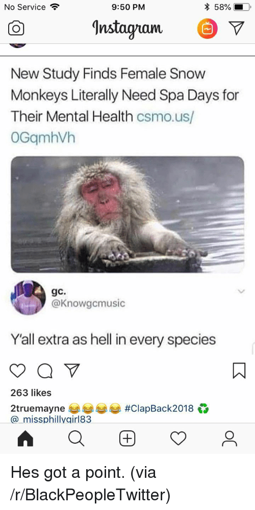 Blackpeopletwitter, Snow, and Hell: No Service  9:50 PM  * 58%-  Instagnam. V  New Study Finds Female Snow  Monkeys Literally Need Spa Days for  Their Mental Health csmo.us/  OGqmhVh  gc.  @Knowgcmusic  Yall extra as hell in every species  263 likes  2truemayne 부부부부 #ClapBack2018  a_missphillygirl83 Hes got a point. (via /r/BlackPeopleTwitter)