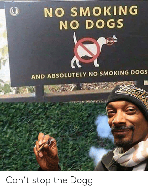 dogg: NO SMOKING  NO DOGS  AND ABSOLUTELY NO SMOKING DOGS Can't stop the Dogg