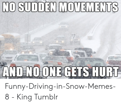 Funny Snow Memes: NO SUDDEN MOVEMENTS  ANDNOONE GETS HURT Funny-Driving-in-Snow-Memes-8 - King Tumblr