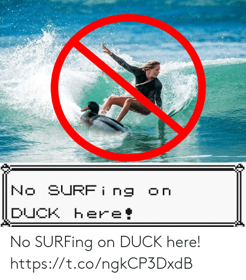 surfing: No SURFing  On  DUCK Here! No SURFing on DUCK here! https://t.co/ngkCP3DxdB