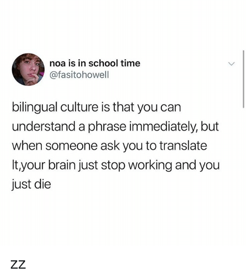 Memes, School, and Brain: noa is in school time  @fasitohowell  bilingual culture is that you can  understand a phrase immediately, but  when someone ask you to translate  It your brain just stop working and you  just die zz