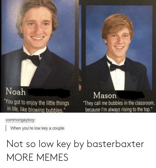 "Low key: Noah  Mason  ""You got to enjoy the little things  in life, like blowing bubbles  They call me bubbles in the classroom,  because I'm always rising to the top""  commongayboy:  When you're low key a couple Not so low key by basterbaxter MORE MEMES"