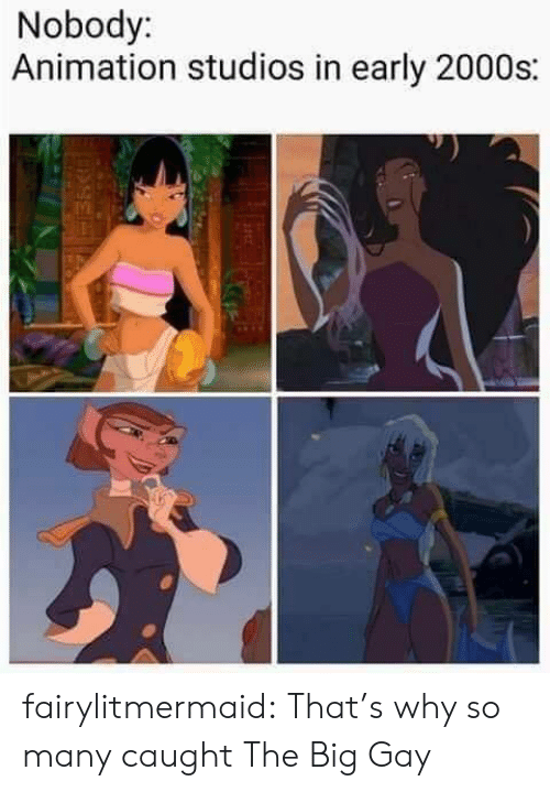 Tumblr, Blog, and 2000s: Nobody:  Animation studios in early 2000s: fairylitmermaid:    That's why so many caught The Big Gay