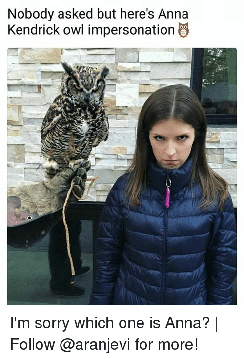 anna kendrick: Nobody asked but here's Anna  Kendrick owl impersonation I'm sorry which one is Anna?   Follow @aranjevi for more!