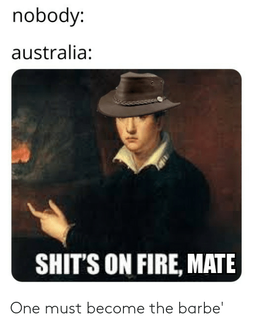 mate: nobody:  australia:  SHIT'S ON FIRE, MATE One must become the barbe'