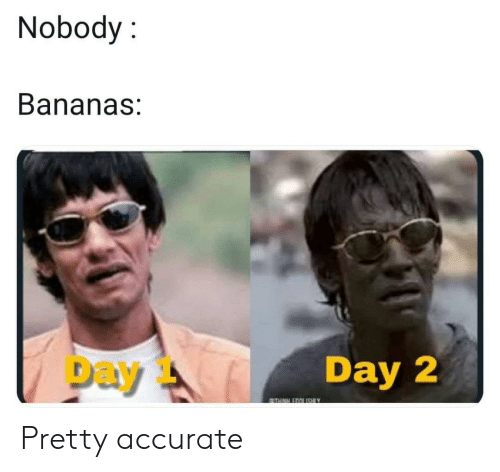 Accidental Racism, Bananas, and Day: Nobody:  Bananas:  Day  Day 2  TH EOOUISHIY Pretty accurate