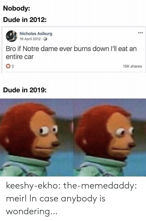 Dude, Target, and Tumblr: Nobody:  Dude in 2012:  Nicholas Asiburg  16 April 2012.  Bro if Notre dame ever burns down I'll eat an  entire car  02  15K shares  Dude in 2019: keeshy-ekho:  the-memedaddy:  meirl  In case anybody is wondering…