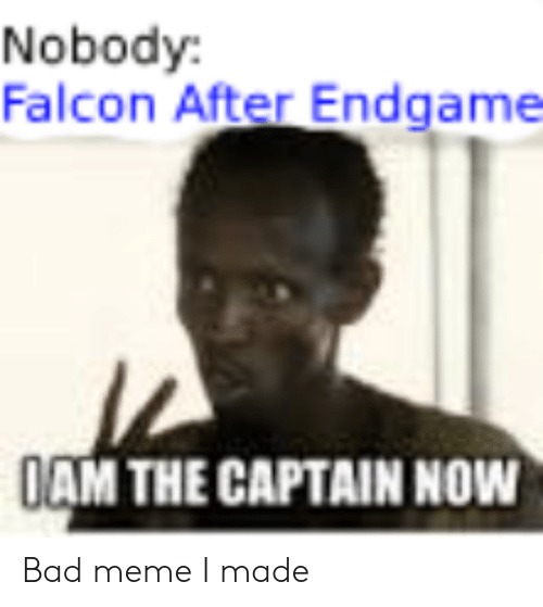 Bad, Meme, and Falcon: Nobody:  Falcon After Endgame  AM THECAPTAIN NOW Bad meme I made
