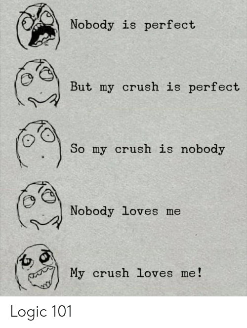 Nobody Is Perfect but My Crush Is Perfect So My Crush Is