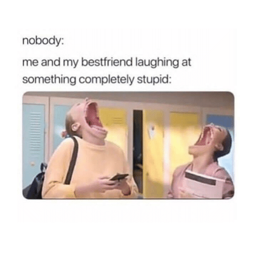 My Bestfriend: nobody:  me and my bestfriend laughing at  something completely stupid: