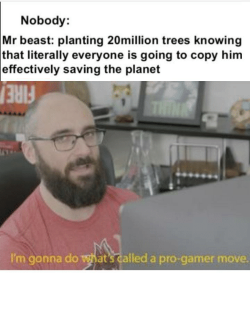 Fire, Trees, and Pro: Nobody:  Mr beast: planting 20million trees knowing  that literally everyone is going to copy him  effectively saving the planet  THIN  FIRE  I'm gonna do what's called a pro-gamer move. Such pro gamers
