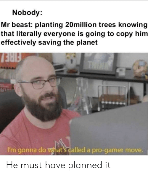 Fire, Trees, and Pro: Nobody:  Mr beast: planting 20million trees knowing  that literally everyone is going to copy him  effectively saving the planet  FIRE  THIN  I'm gonna do what's called a pro-gamer move. He must have planned it