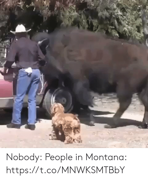 Montana: Nobody:  People in Montana: https://t.co/MNWKSMTBbY