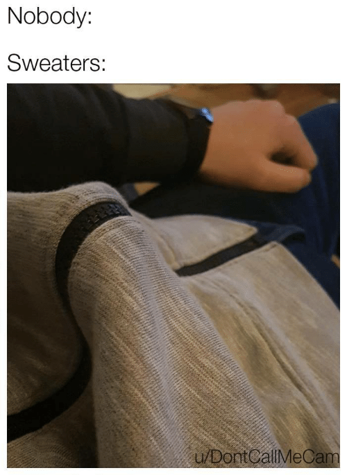 Nobody,  Dont, and Sweaters: Nobody:  Sweaters:  u/Dont CallMeCam