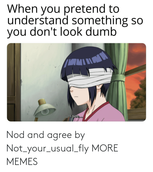 fly: Nod and agree by Not_your_usual_fly MORE MEMES